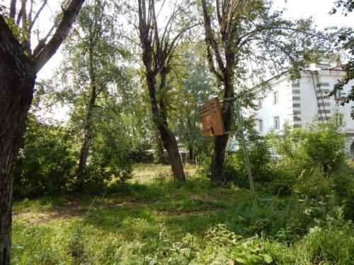 Спортивная площадка Комсомольская д.63